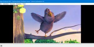 VLC Media Player (VideoLan)